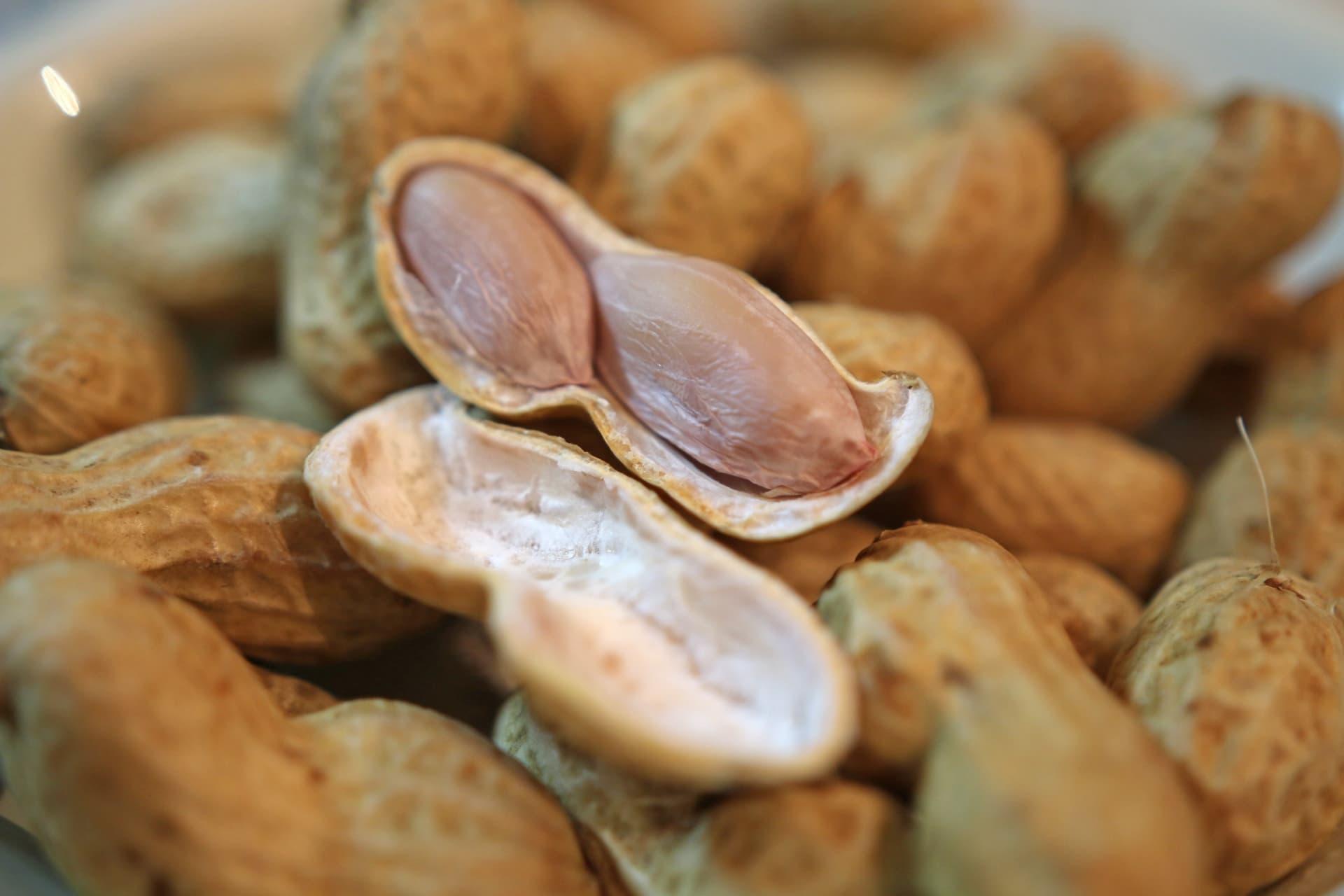 ピーナッツの画像
