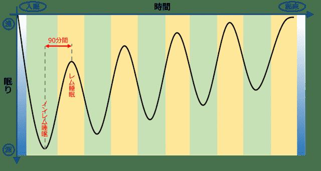 レム睡眠とノンレム睡眠が90分感覚で繰り返される